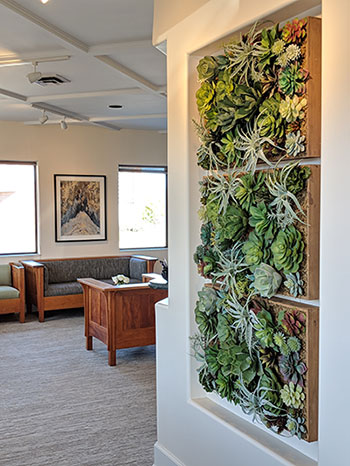 Interior at Bryan Hill, DDS.
